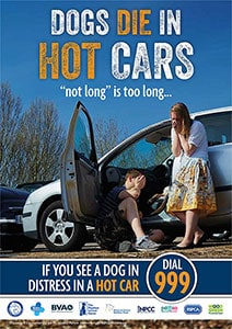 DogsInHotCars